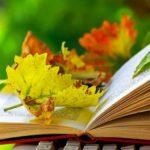 Осенние каникулы 2019-2020 учебного года: когда начинаются в школе